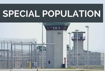 opioid, agonist medication, criminal justice, prison, inmates, healthcare